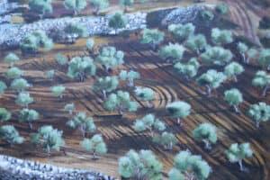 Taqi Sabateen, Olive Field, 2015, acrylic on canvas, 60 x 80 cm
