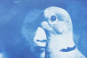 Shada Safadi, Staring #1 (2020), cyanotype print (edition of 5), 20 x 28 cm