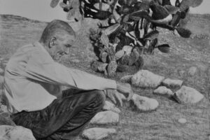 Samah Shihadi, Harvest Break #2, 2017, charcoal and pencil on paper, 56 x 76 cm
